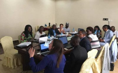 The AMD elective Conference and Training for Election Observation, Abuja -Nigeria